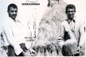 کیله کردن برنج دهه 40